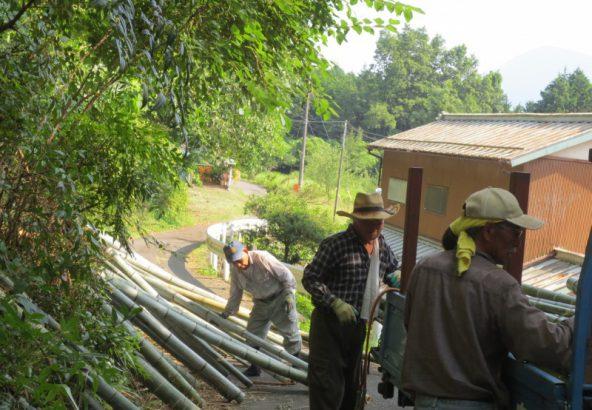 竹炭の伐採